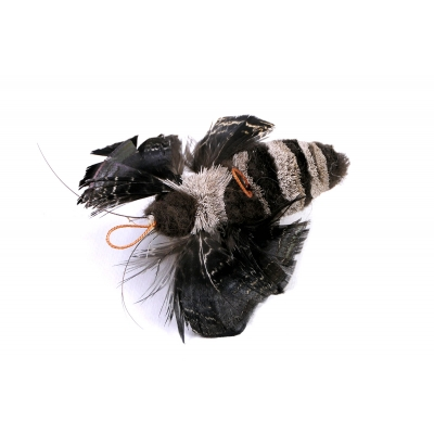 Tabby Tijger Nachtvlinder